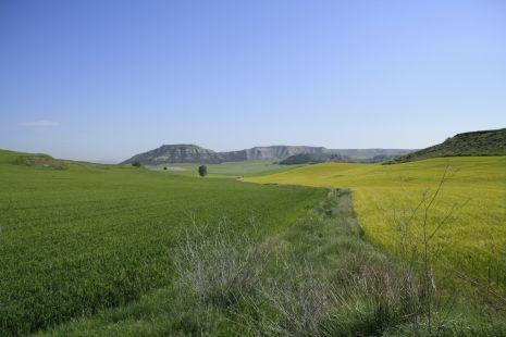 Campos de Casrtilla