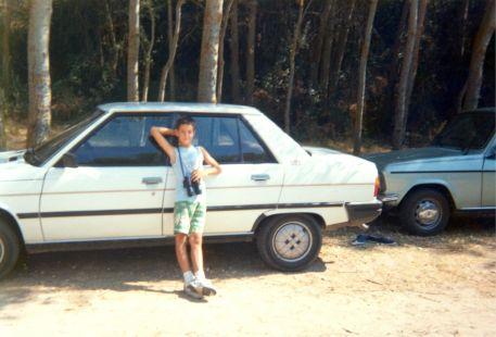Luguillas 1988