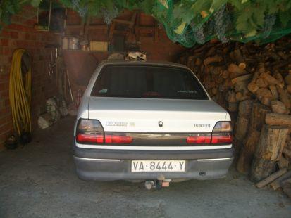 Renault 19. La siesta de la gata