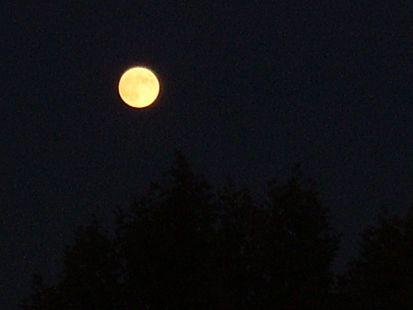 Había luna llena.