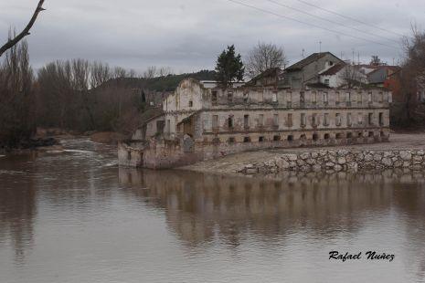 rio de mojados