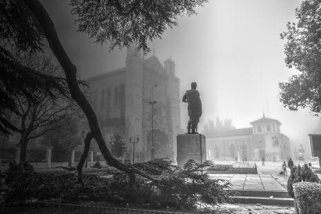 El guardian en la niebla